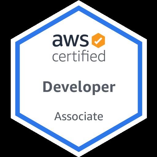 DevOps Developer Associate Portfolio BI