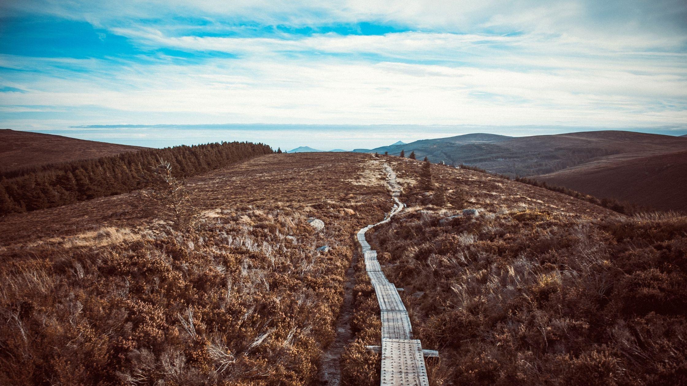 5 of the best autumn walks in Co. Dublin