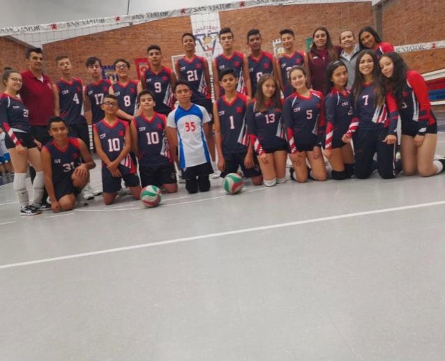 Equipo voleibol