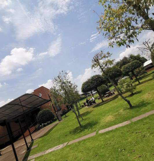 Zonas de verdes del colegio