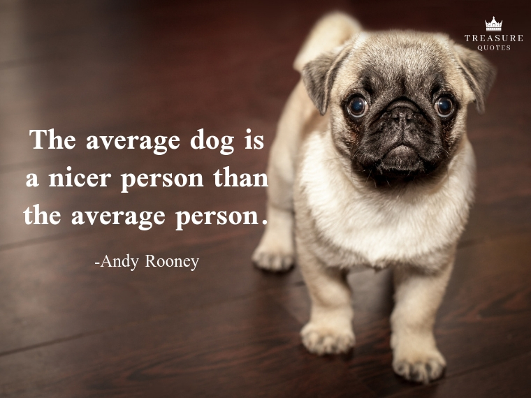 """""""The average dog is a nicer person than the average person."""""""