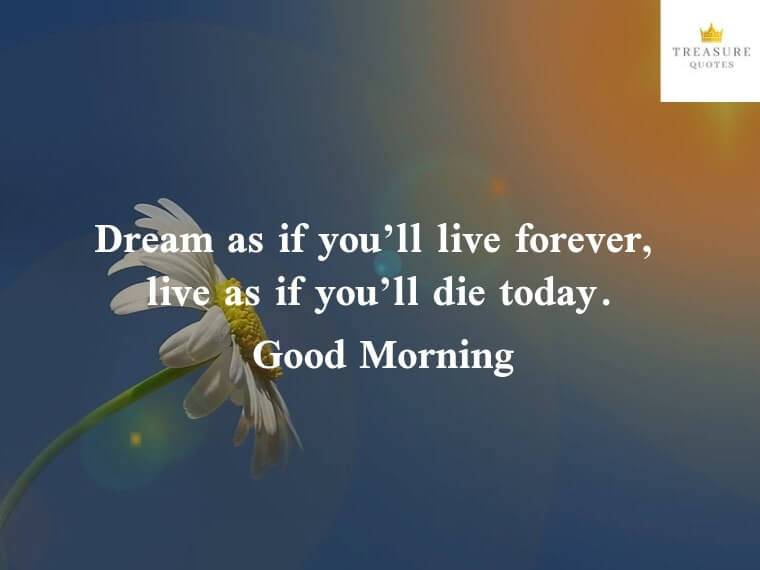"""Dream as if you'll live forever. Live as if you'll die today."""