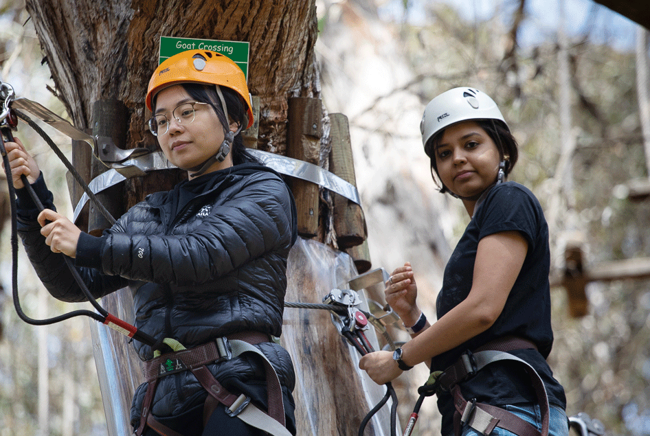 Team bonding experience, tree climbing, tech team bonding