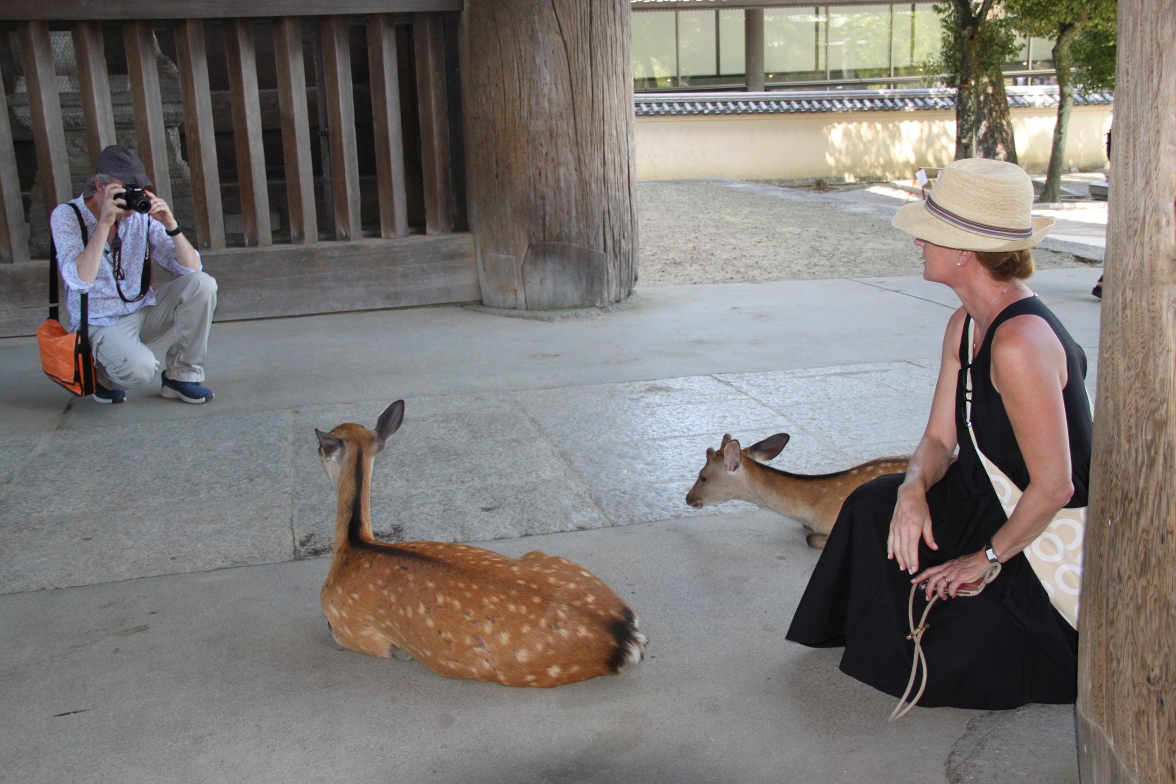 Japan Zen Reise Nara-Temple Beate Aldag Ulrich Halstenbach