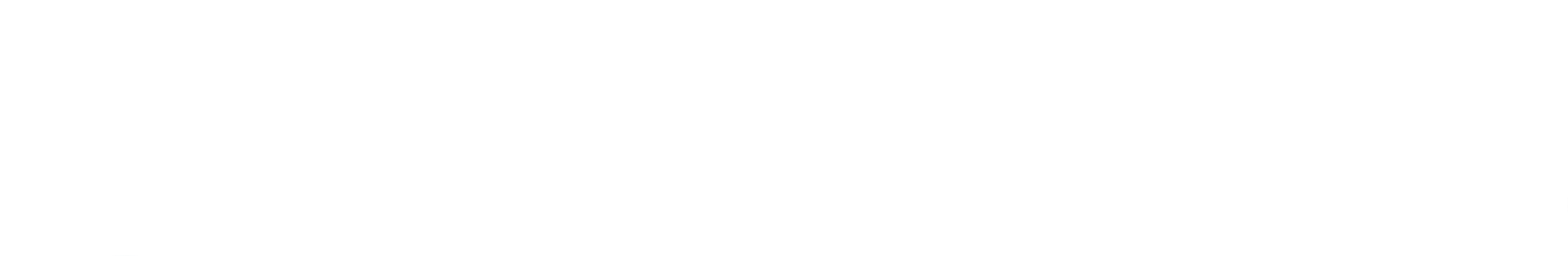 Transunion Icon