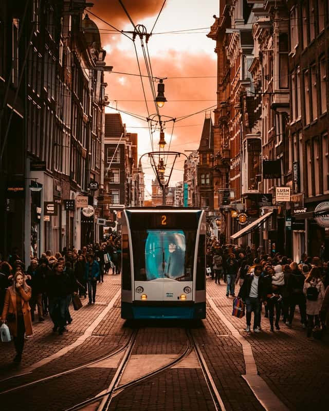 Trams in amsterdam