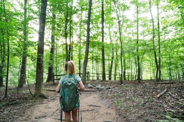 Backpacking with kids enjoying forest and greenery