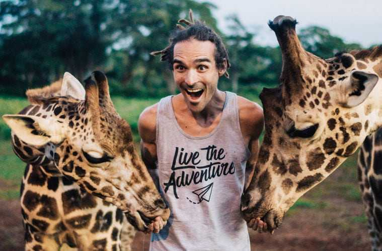 louis cole giraffe