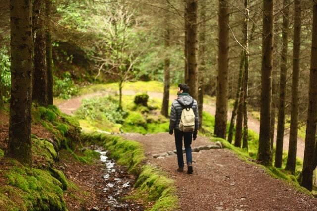 Hiking in trails essentials