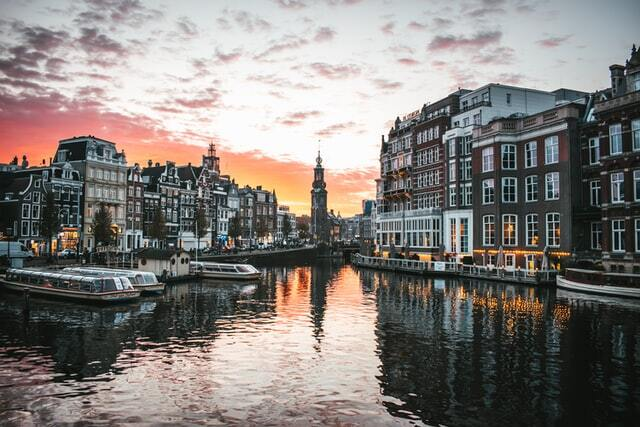 Bus tours of Amsterdam with great view.