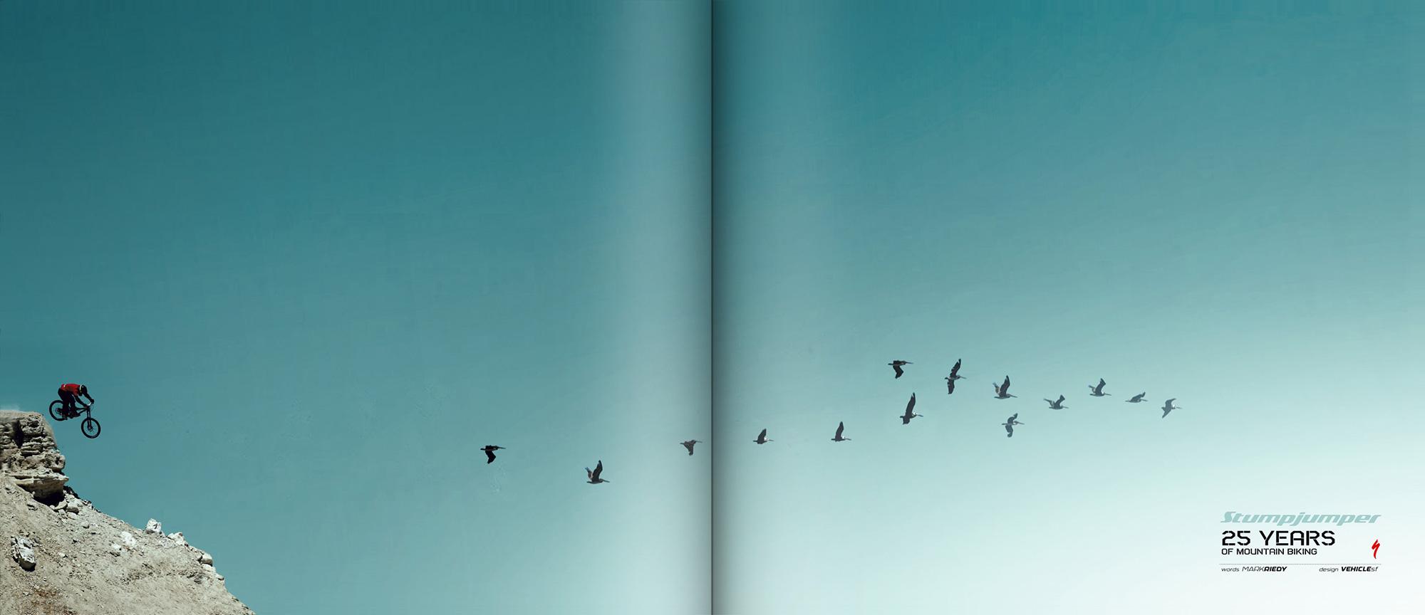 Stunt jumper anniversary book spread images of birds