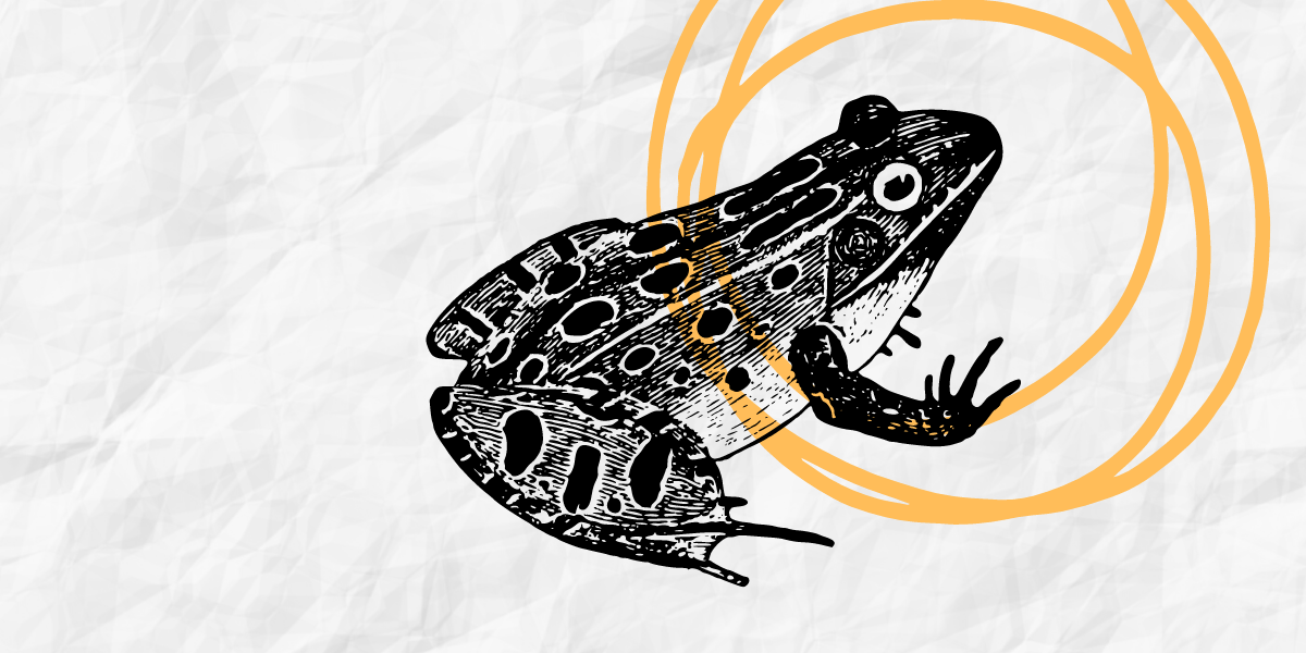 Eat Your Frogs First, Productivity Tips for Mortgage Pros