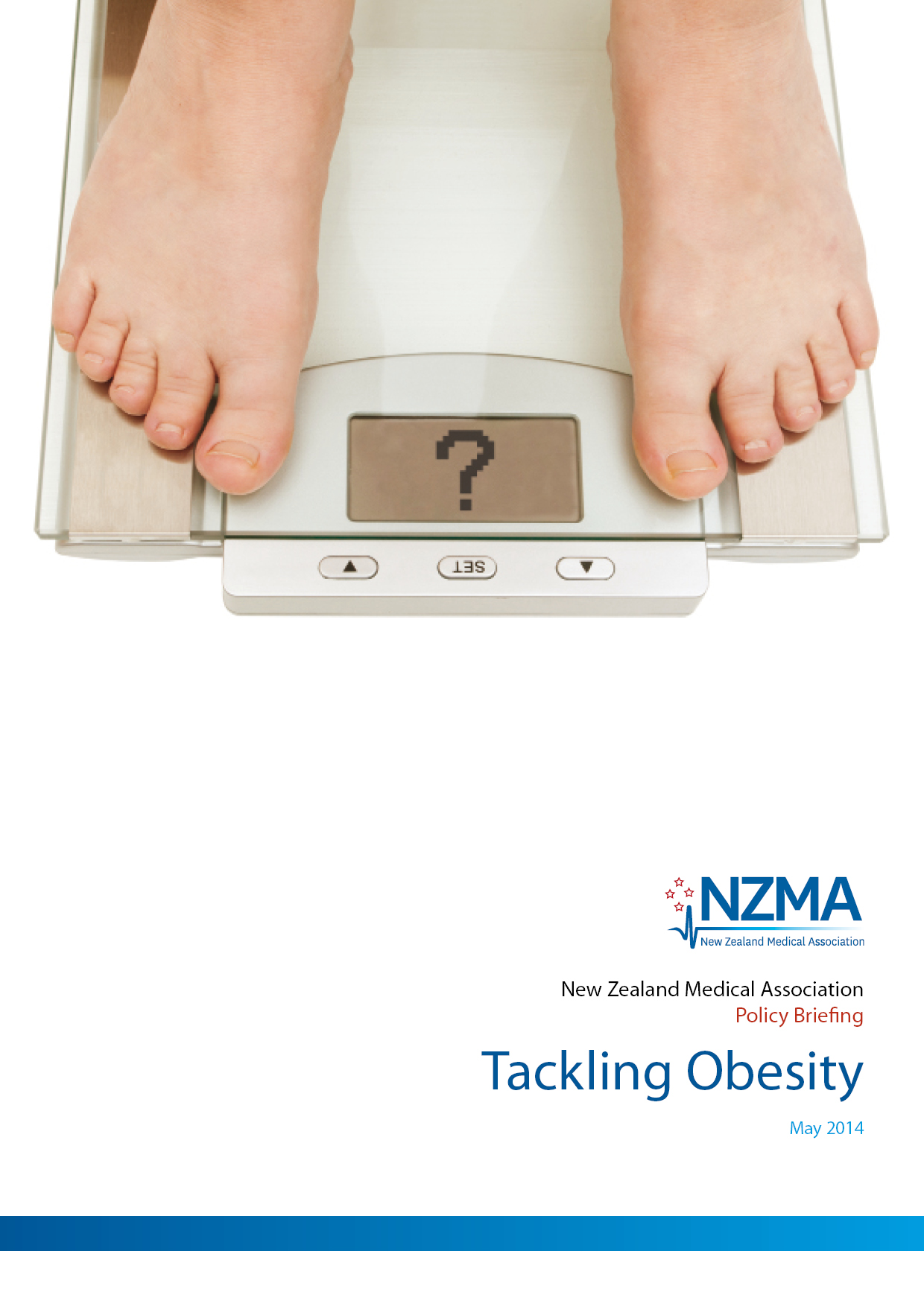 Obesity Briefing Cover
