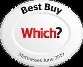 Which Best Buy June 2019 logo