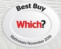 Which Best Buy November 2019 logo