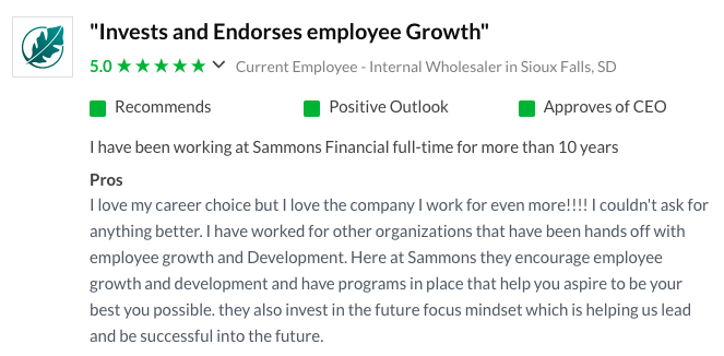 Review of a company's corporate culture