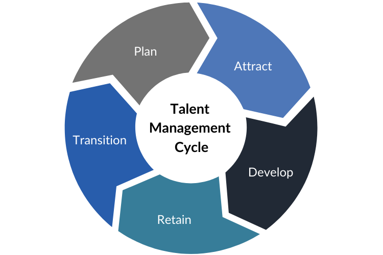 Talent Management Cycle Chart