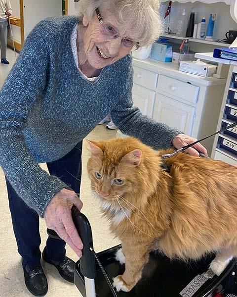 Eldre dame og en katt