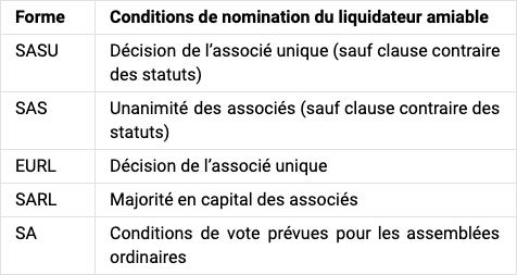 conditions nomination liquidateur amiable