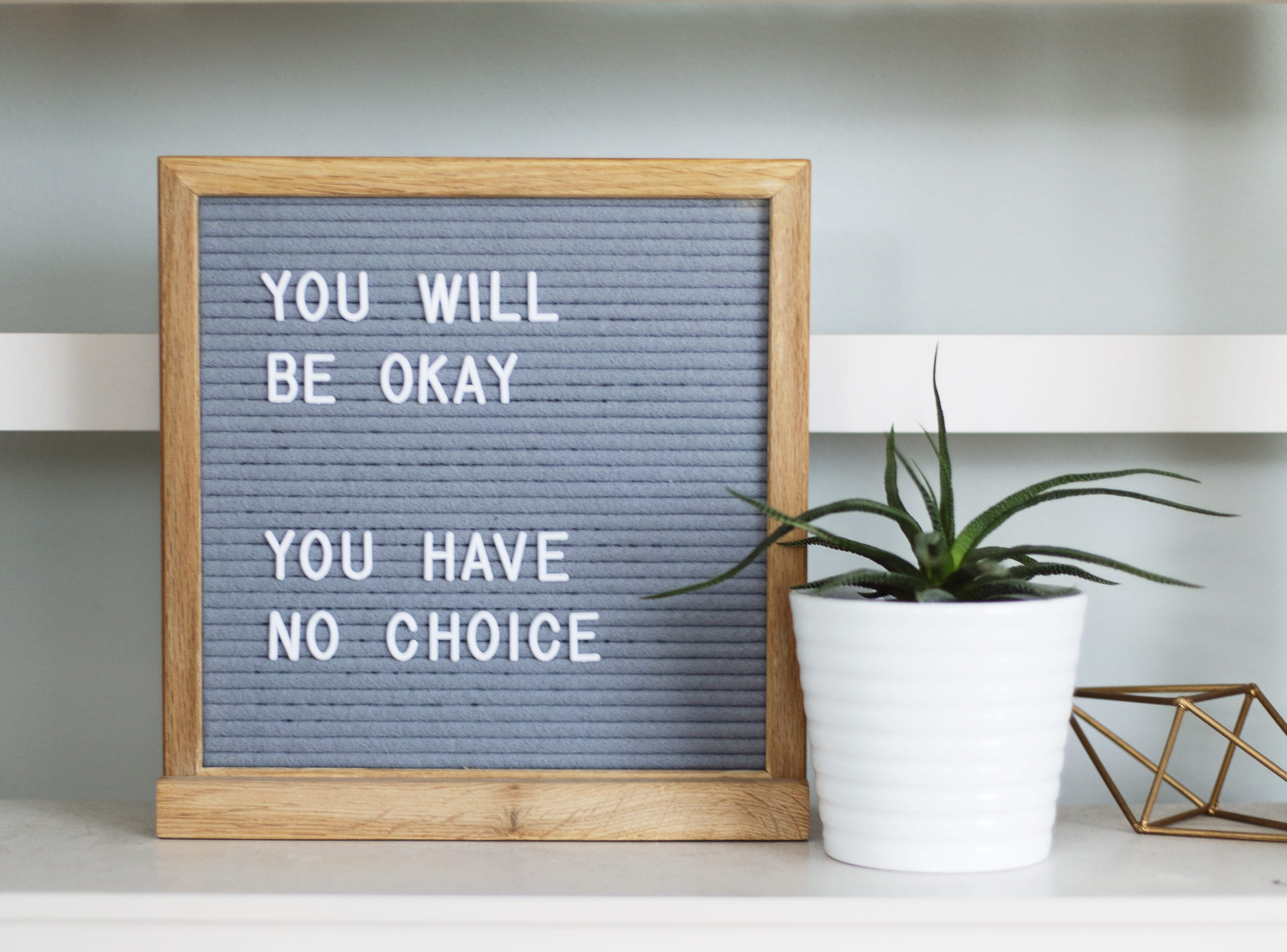 A photograph of a white desk against an off white wall with a white panel in the middle going left to right. On the desk is a wooden frame with a grey background, in the frame it reads 'You will be okay, you have no choice'. To the right of this is a small white plant pot with a green plant that has long thin leaves.