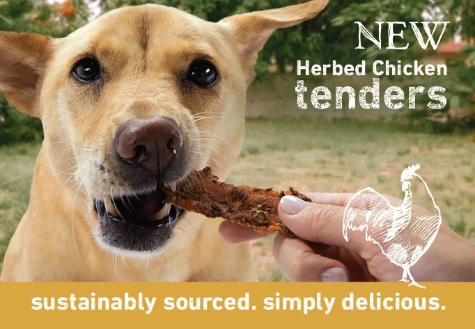 Wisdom Dog Food