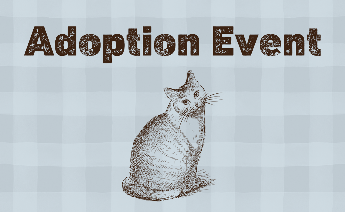 Adoption Event with Bridgeport Cat Rescue