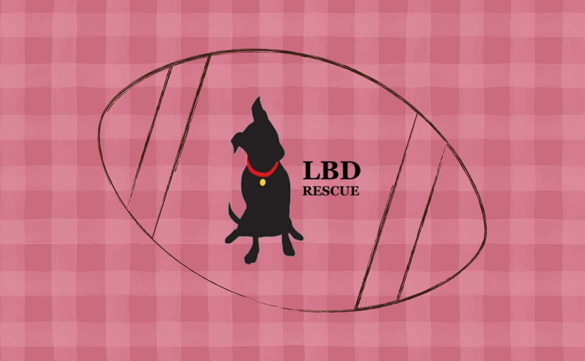Special Event: Share the Love with Little Black Dog Rescue