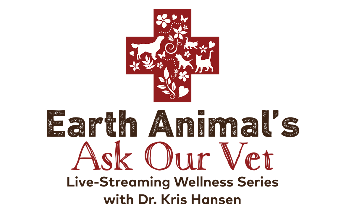 Ask-Our-Vet | Live Q&A