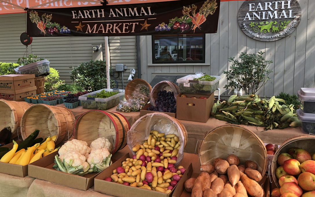 The Earth Animal Market Is Back!
