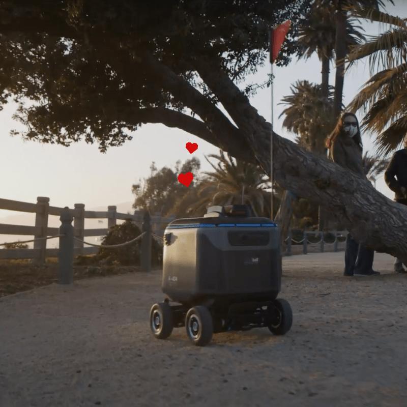 Kiwibot Experiences