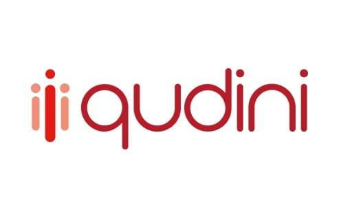 Qudini logo