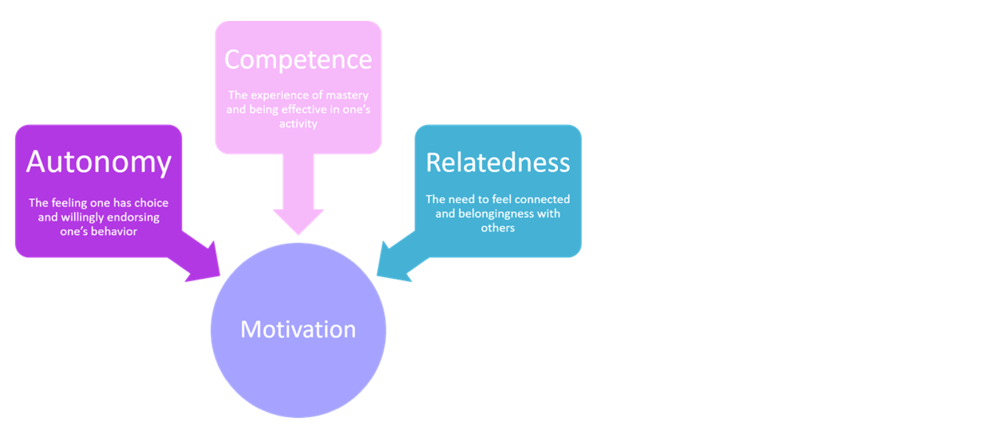 Self-Determination Theory