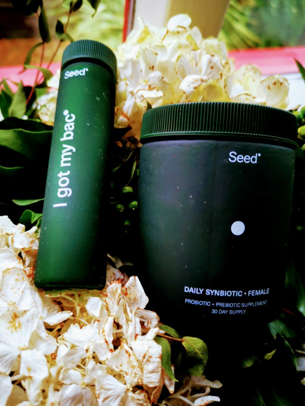 Seed - Welcome Kit   Gift Ideas for the Green Goddess Who Lives a Hip & Healthy Lifestyle