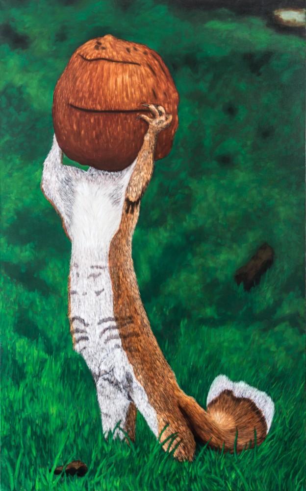 Coconut Squirrel
