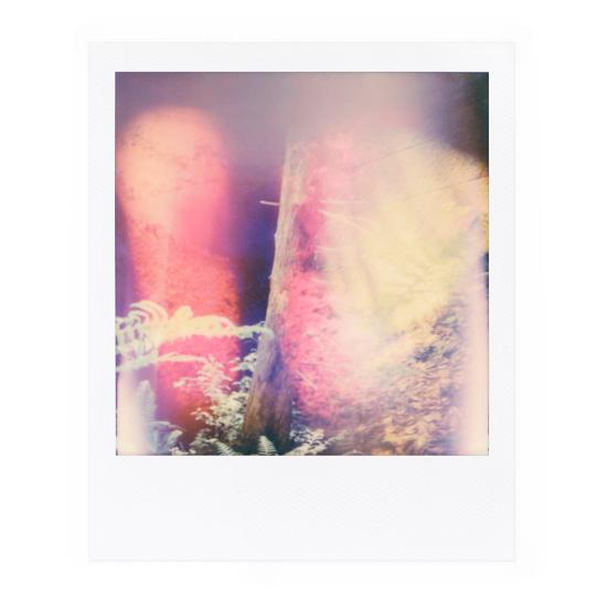 Polaroid Nr. 16, Mai 2018