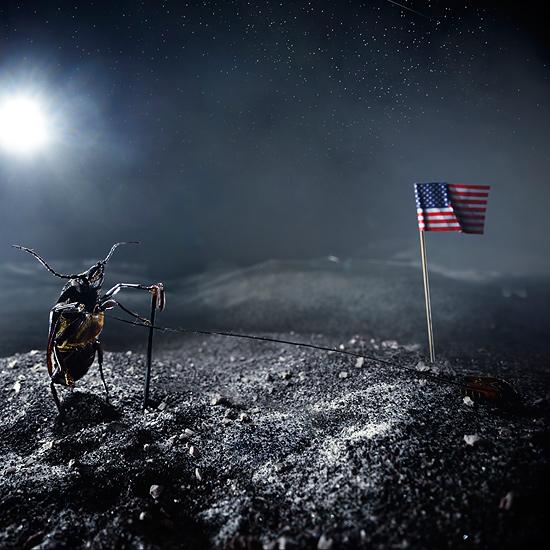 Der Mann und der Mond, Februar 2018