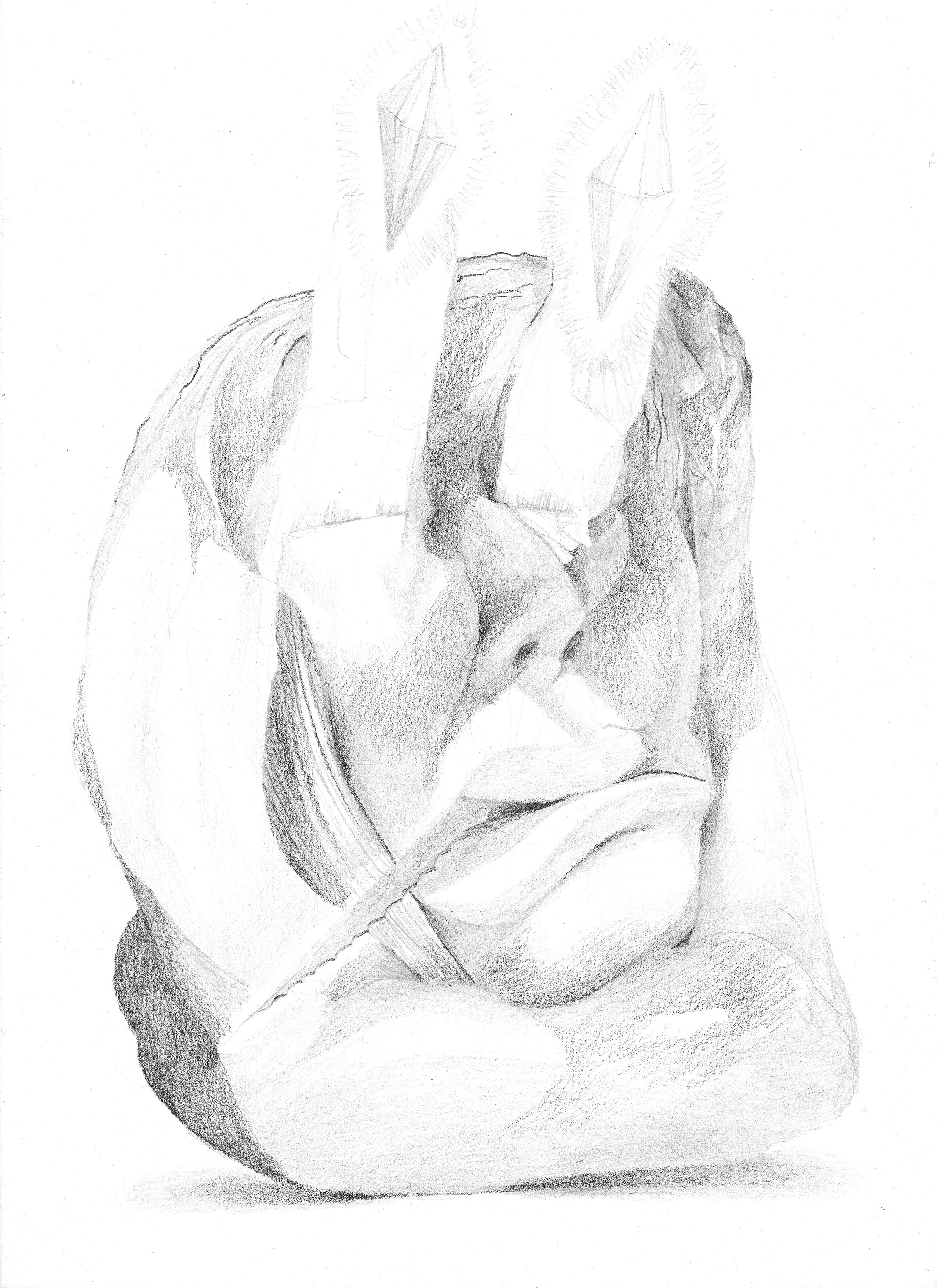 Zeichnung 37