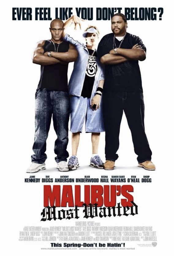 Movie Poster for the movie Malibu's Most Wanted