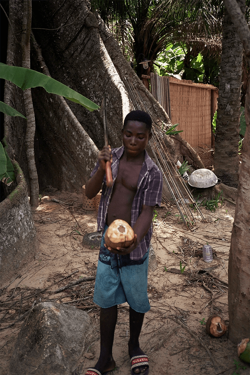 cracking a coconut in ghana