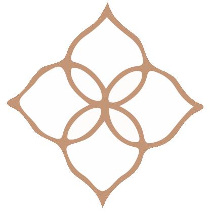 Four petal flower icon