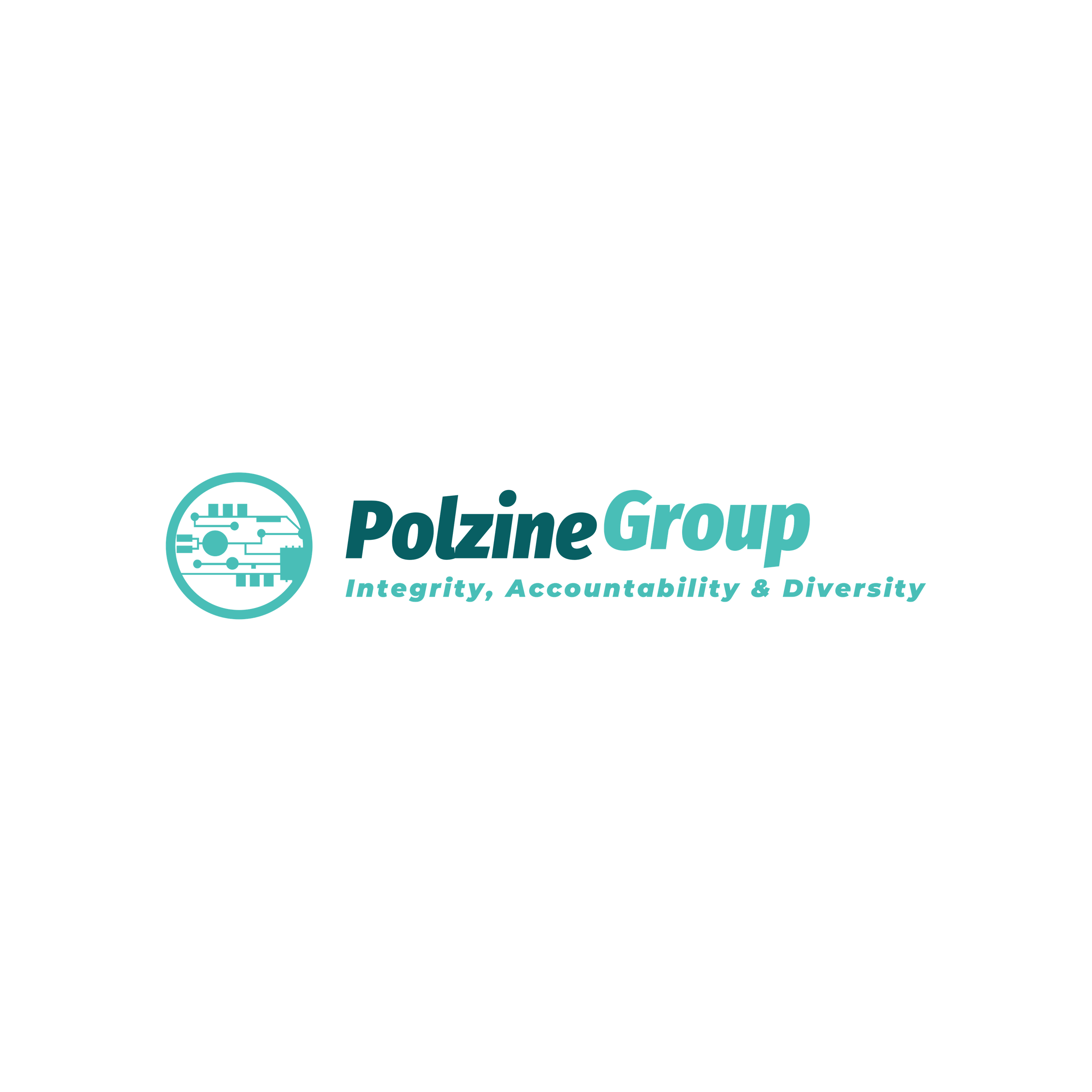 Polzine Group
