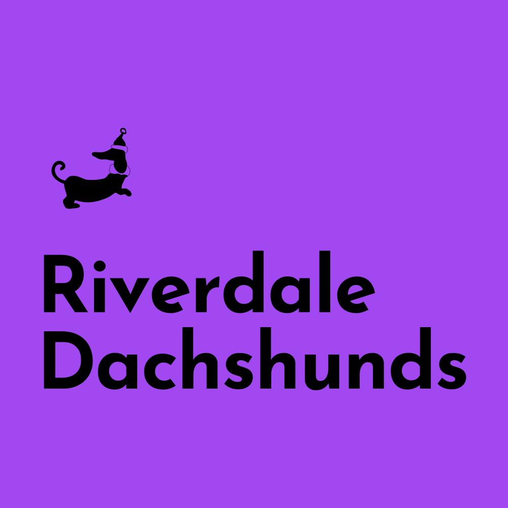 Riverdale Dachshunds