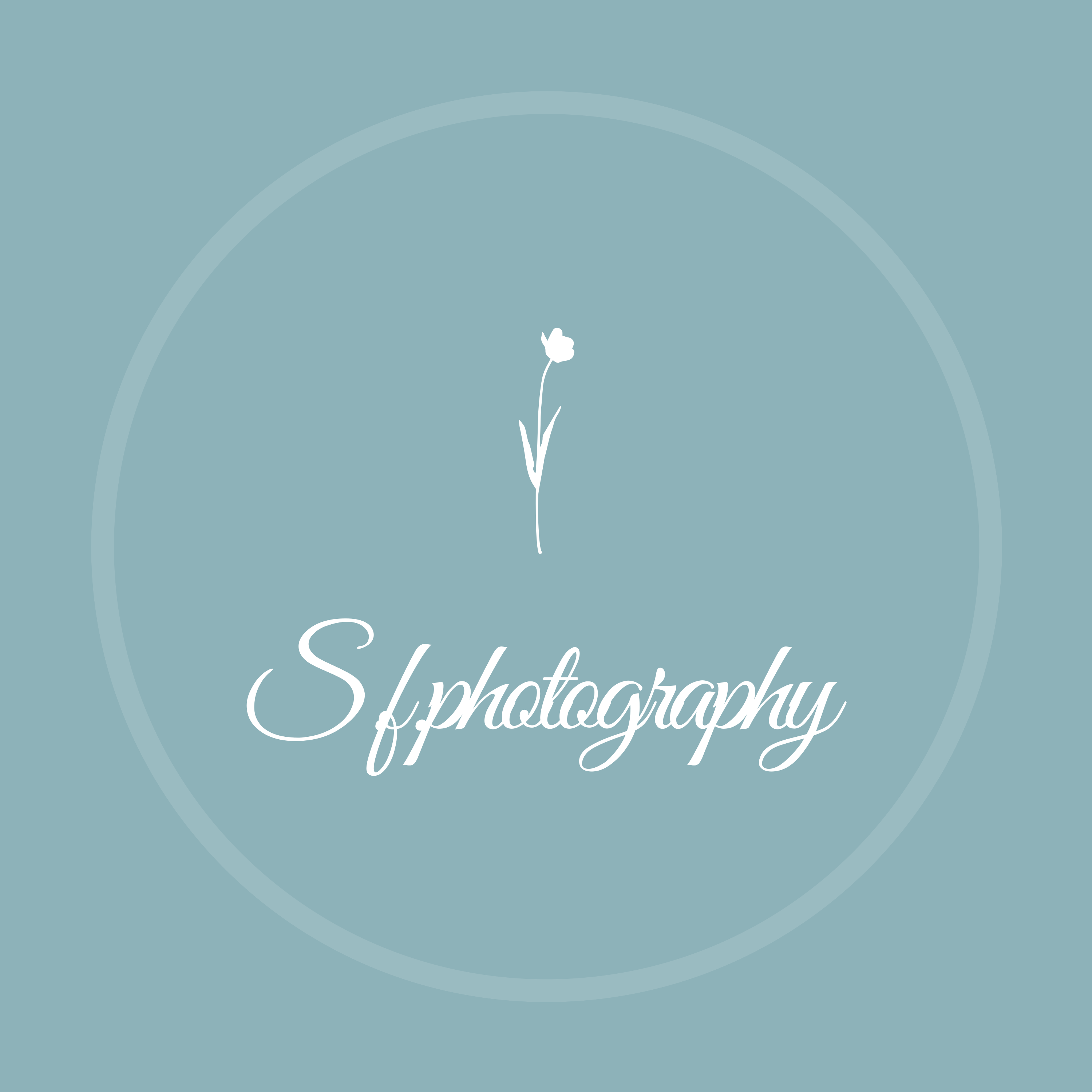 S.f.photography