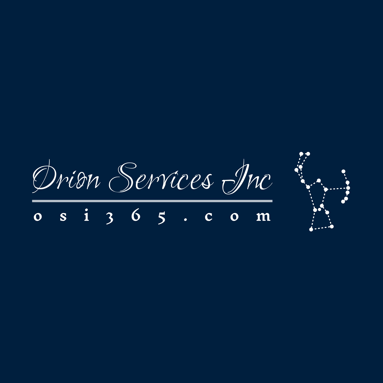 Orion Services Inc