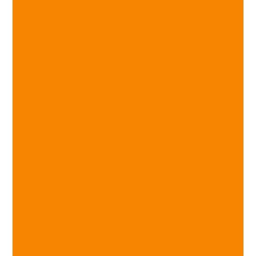 brain knowledge icon