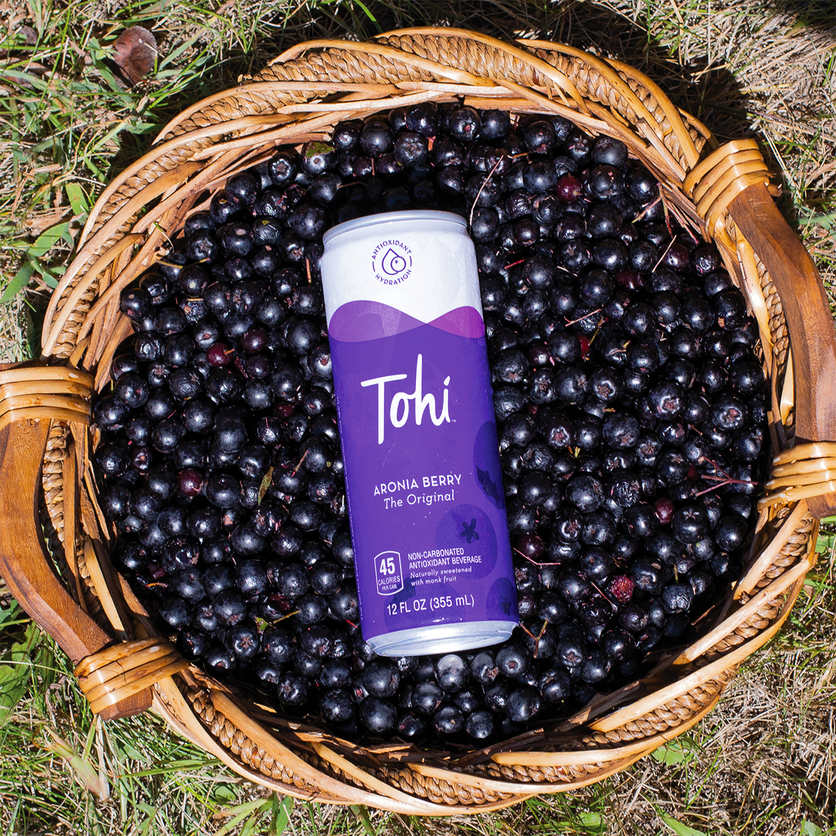 Advancing Wellness with Aronia Berries