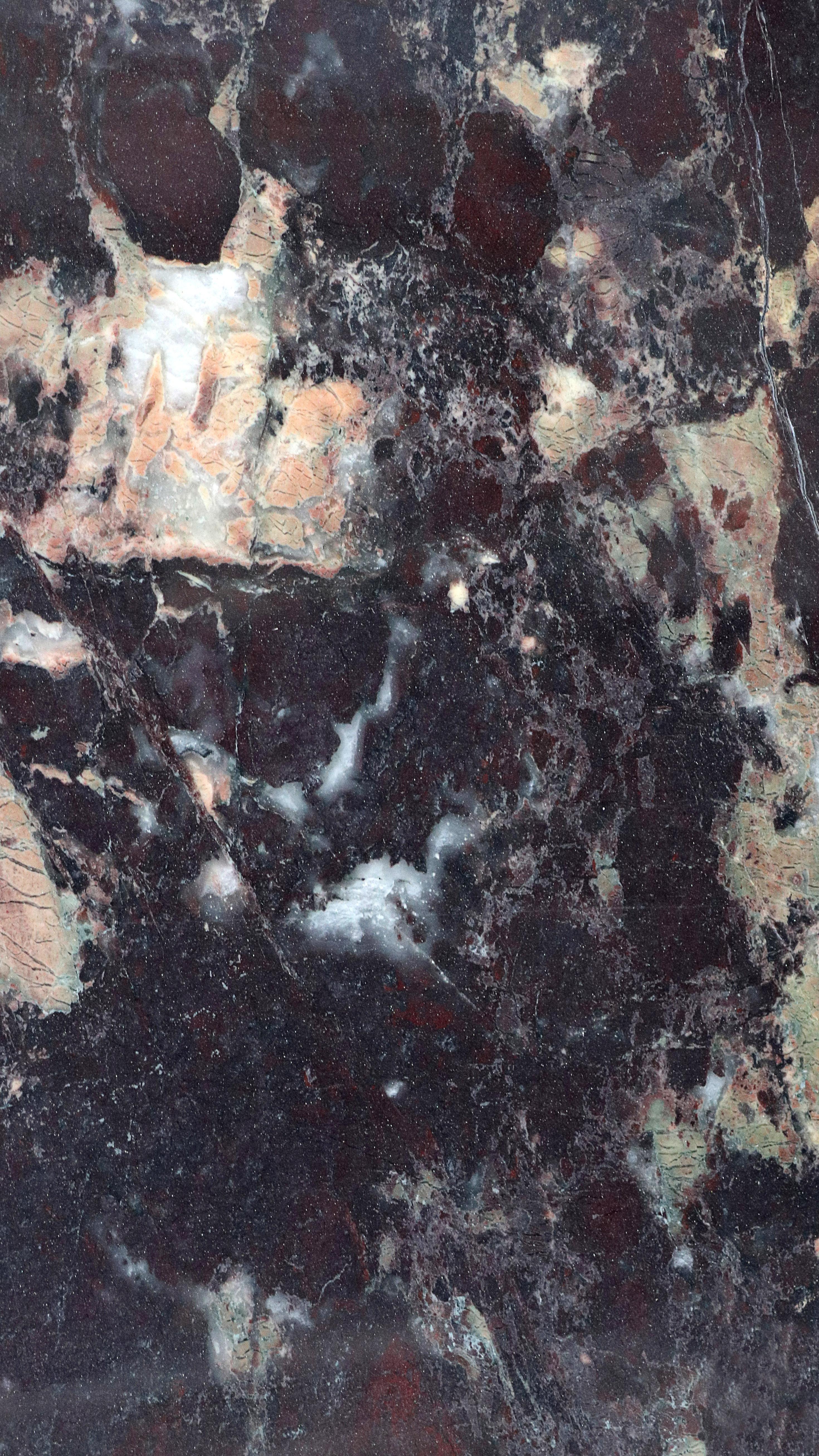 Rosa Levanto Quartzite