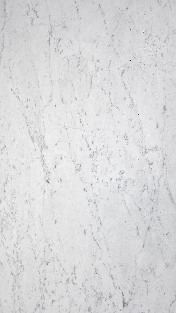 BIANCO VENATINO GIOIA Marble