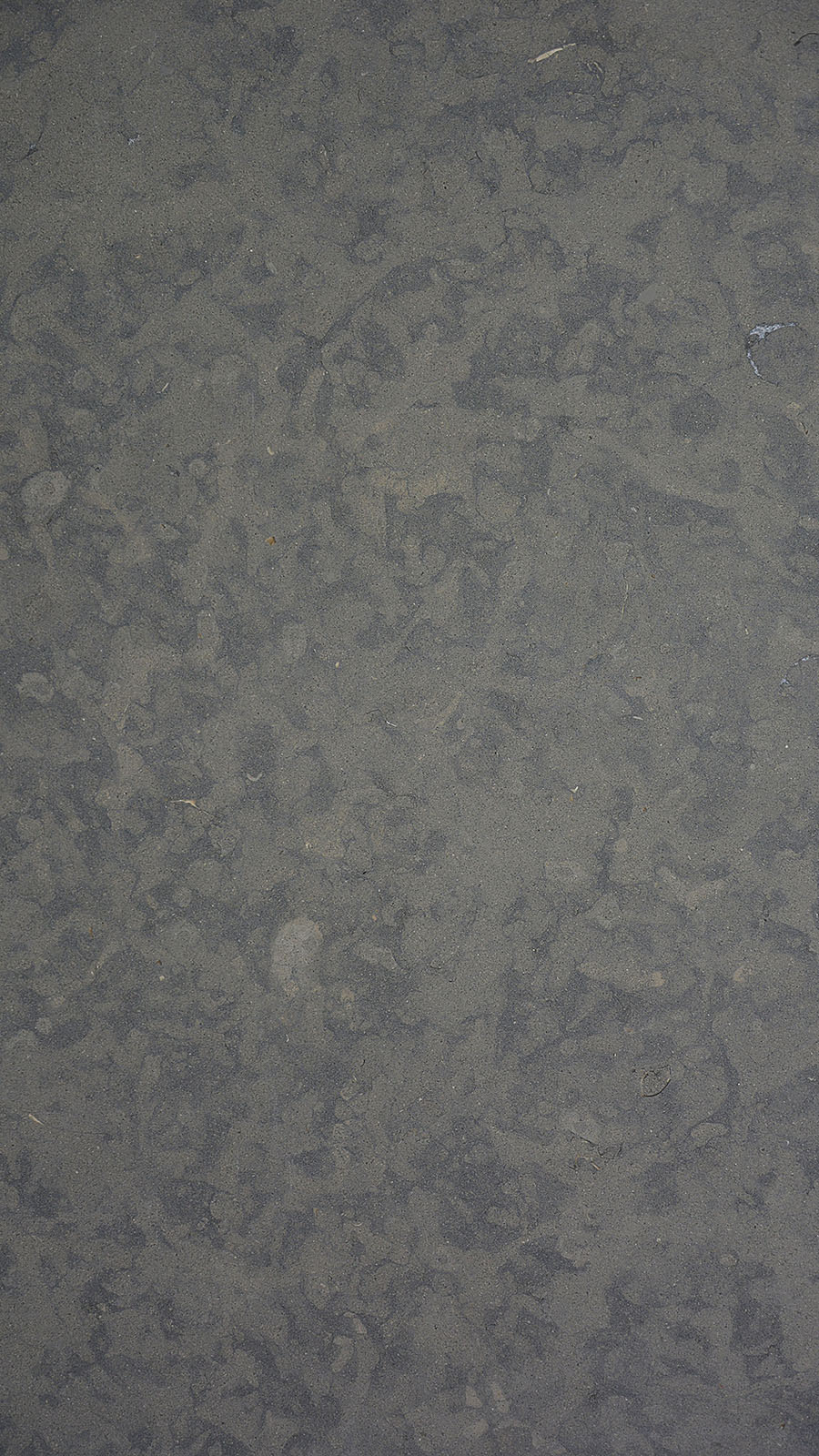 Azul Armani Limestone