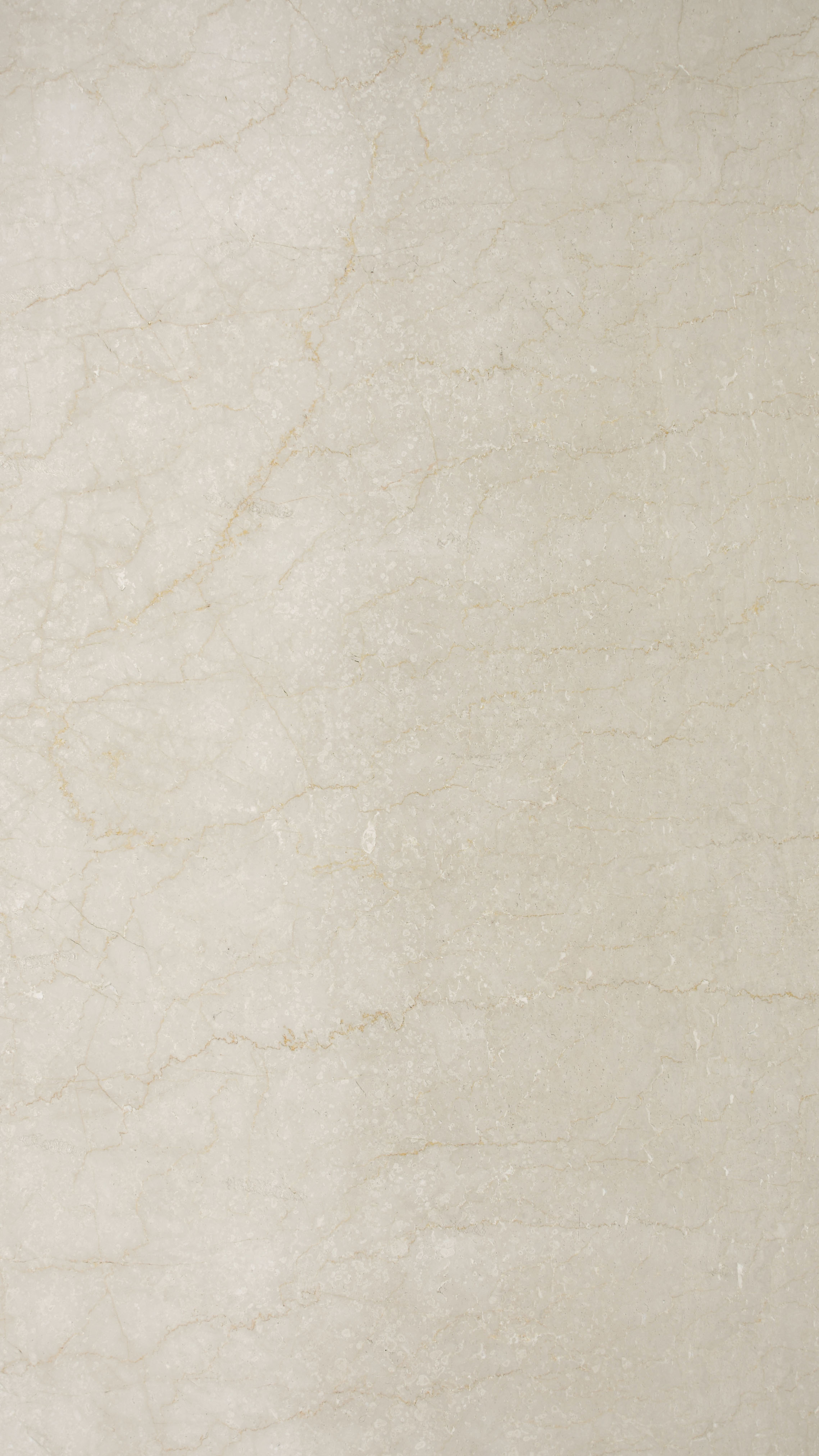 Avorio Dorato Marble